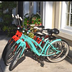 iOttie Bike Mounts make bike tours more fun!
