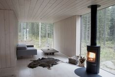 Type of log burner we're considering, located near glass doors