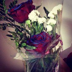Rosas rojas con borde azul