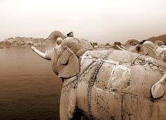 Stone elephants at Jag Mandir seem to stare out over Lake Pichola towards Udaipur's City Palace    Copyright Tammy Winand  Available as a print on request