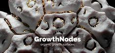 growthnodes writes: Today we finalized the first public release of the GrowthNodes addon for Blender. GrowthNodes is a Blender plugin for generative content creation and simulation of organic growth processes on polygonal surfaces. It can be utilized for both destructive and non-destructive content generation. Simulation is stored as a series of shapekeys which allows fineRead More