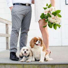 Puppies! I love when my couples include their pups in their engagement photo sessions! . . . . #engagementsession #njweddings #jkpbrides #jayekogutphotography #njweddingvenues #ENGAGEMENTPHOTOS #sandyhook #sandyhookbeach #jerseyshore #rosesarethebest #weddingtips #weddingdream #engaged #engaged2017 #engaged2018 #couplesphotos #shesengaged #wereengaged #soontobemrs #pupsofinsta #picsofpups #dogsareawesome #dogsofIG jayekogut.com