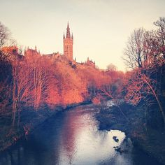 Glasgow is host to some of the most famous art collections in the world, and enjoys the title of being the best shopping destination Top Place, Famous Art, West End, Glasgow, Vintage Shops, Scotland, Europe, River, London