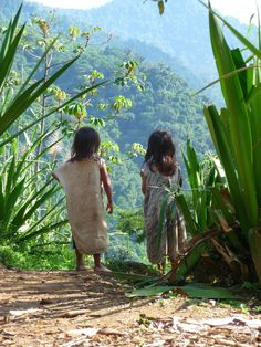 Kogi Children Sierra Nevada, Santa Marta, Natural Salt, Vader Star Wars, Cold Meals, South America, Earth, Explore, World