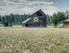 Sunflower Barn Quilt, Ronald WA Barn, Washington Barn Quilt, Barn Quilts of Kittitas County, Vukonich Barn