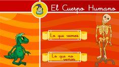 El cuerpo humano: Primer ciclo de primaria Country Day School, School Teacher, Science, Movie Posters, Internet, Shopping, Primary Education, Science Area, Teaching Resources