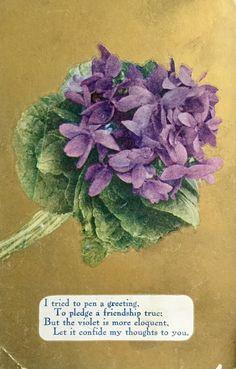 Violets Speak of Truth and Love by Yesterdays-Paper.deviantart.com on @DeviantArt