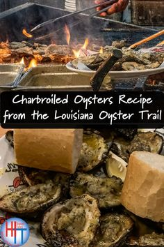 Drago's Charbroiled Oysters New Orleans style won me over. Know how to grill your own oysters with this recipe for Grilled Oysters from the official Louisiana Oyster Trail recipe book. - Charbroiled Oysters Recipe from the Louisiana Oyster Trail Creole Recipes, Cajun Recipes, Seafood Recipes, Seafood Dishes, Grilled Seafood, Fish And Seafood, Charbroiled Oysters Recipe, Protein Mug Cakes, Oysters Rockefeller