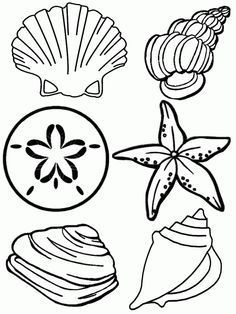 Under The Sea Coloring Pages - if you live near the ocean, send your sponsored children photos of the seashells you find on the beach along with a few of these coloring pages.