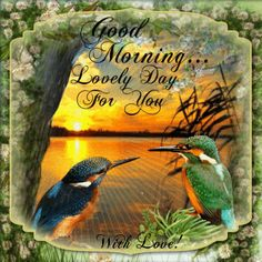 Everyday Card/Good Morning section. Send this ecard to anyone and wish them a Lovely Day with your love!