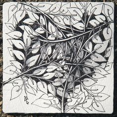 Zentangle by  Maria Thomas, Zentangle Co-Founder