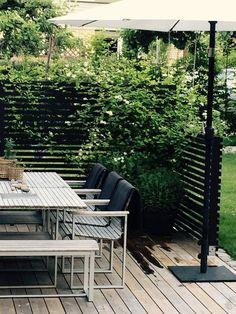 Pergola Ideas For Patio Backyard Fences, Garden Fencing, Backyard Landscaping, Outdoor Rooms, Outdoor Gardens, Outdoor Living, Outdoor Decor, Terrace Design, Garden Design