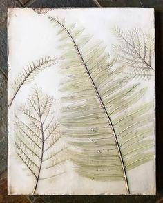 Fern sample in plaster. Plaster Cast, Organic Art, Nature Prints, Flora And Fauna, Leaf Prints, Ferns, Inspiration, Instagram, Design