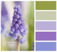 Decorando - vuelta al color: lila, lavanda, verde