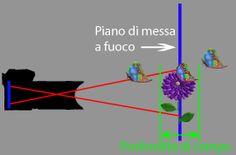 L'uso del diaframma e il controllo della profondità di campo