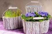 Žardinka kůra - obal na květináč