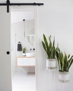 Our gorgeous Willow timber bathroom vanity Styling and photography: Venita Wilson Photography Timber Bathroom Vanities, Timber Vanity, Loft Style, Minimalist, Interior, Modern, Vanity Ideas, Sunshine Coast, Furniture