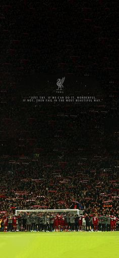 Liverpool Fc Wallpaper, Liverpool Wallpapers, Football Wallpaper, Liverpool Football Club, We Can Do It, Football Players, Aesthetic Pictures, Soccer, Sports