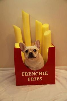 frenchie fries