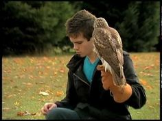 This guy is a little odd, but it's nice to finally find a video of someone who practices falconry.  I would love to get into it but I just don't have the time right now :/  Someday though...