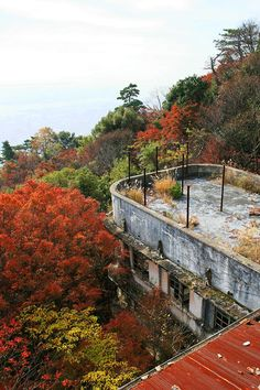 abandoned hotel of the summit of the mountain 摩耶観光ホテル: 2011年 紅葉 No.2