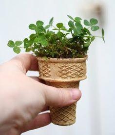 Starting An Edible Garden with icecream cones as disposable pots.