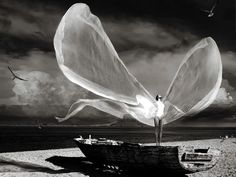 woman standing in boat on beach with large white wings spread,  artwork,  Imagine you could fly... how do you feel?