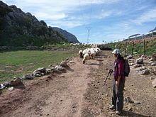 Villaluenga del Rosario - Wikipedia, la enciclopedia libre