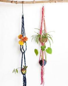 Flower Power Plant Hanger by Wool and the Gang