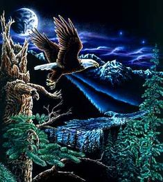 Hidden eagle images in the moon by Stephen Michael Gardner will expand your mind and balance your brain hemispheres. Hidden Art, Hidden Images, Hidden Pictures, Eagle Images, Eagle Pictures, Art Pictures, Hidden Optical Illusions, Eagle Wallpaper, Eagle Painting