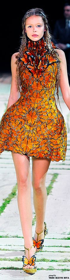 Color Theory Therapy| Serafini Amelia| Orange Butterfly Detail-Alexander McQueen Spring/Summer 2011
