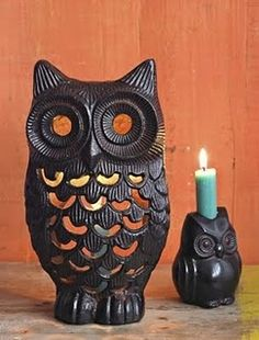 Owls  Love these