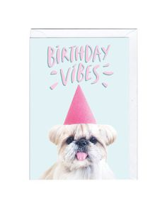 Jolly Awesome & Kuma JP2028-Birthday-Vibes.jpg