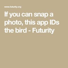 If you can snap a photo, this app IDs the bird - Futurity