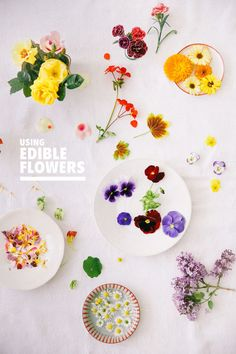 using edible flowers, blogged at designlovefest