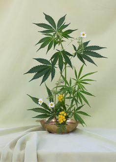 Pantyhose weed bowl