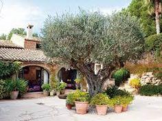 Resultat d'imatges de jardines rusticos mediterraneos