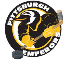 Hockey Logos, Stanley Cup Champions, National Hockey League, Pittsburgh Penguins