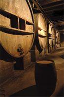 Château de Clapier : vin AOC Côtes du Luberon, à Mirabeau, Provence Luberon #vin #wine