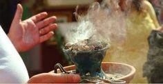 Brûlez cette plante dans votre maison : après seulement quelques minutes, un miracle va se produire