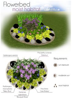 Flowerbed for moist habitat. Make your own project of flowerbed with MyGreenSpace http://mygreenspace.pl/en