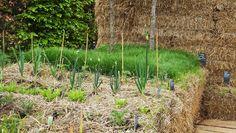 Festival de Jardins. Paysage à goûter à Chaumont-sur-Loire #France elisaorigami.blogspot.com
