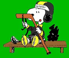 Even Snoopy likes hockey...