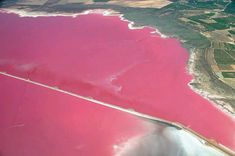Pink Lake of Salina de Torrevieja, Spain. One of 8 pink lakes in the world!