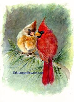 Original watercolor of a two cardinals entitled Always Yours or a watercolor print. You choose! (Update - ORIGINAL SOLD, prints available) What can be better than two cardinals snuggling together, protecting and loving each other? These two little cuties are doing just that in Always Yours. It is Love Each Other, Always You, Watercolor Print, Cardinals, Order Prints, Birds, The Originals, Painting, Instagram