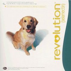 Revolution For Large Dogs 40-80 Lbs 10 Flea Doses Plus 16 Tablets Canex Dewormer Listing in the Flea & Tick Care,Grooming & Health Care,Dogs,Pets,Home & Garden Category on eBid United States | 144105889