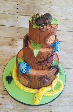 Hope's Sweet Cakes: Creepy Crawly Cake