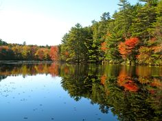Fall in RI by Sharon Lefebvre