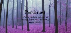 What is Ponderlust?