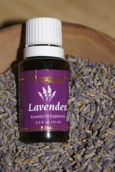 Young Living Oil Lavender - one of my favorites - great to help with sleep, burns, it's amazing.